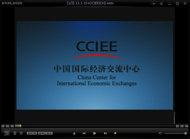 China Center for International Economic Exchanges